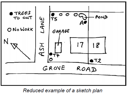 Example tree sketch plan